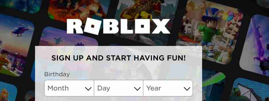 Roblox customer support services